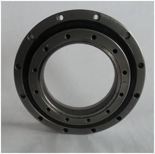 SHD reducer bearing